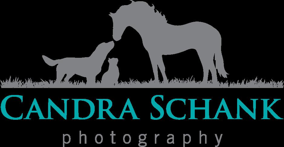 Candra Schank Pet Photography