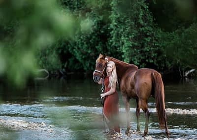 horse and rider in a river