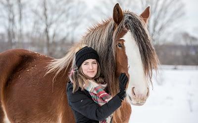 Big Beautiful Clydesdales / Owen Sound & Collingwood Pet & Equine Photographer
