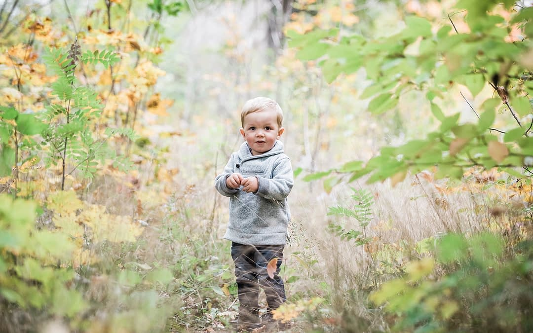 5 Favourite Outdoor Locations / Family & Pet Photographer