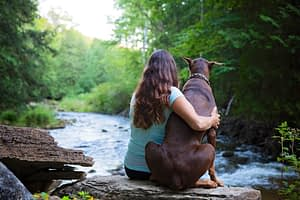 Pet Photography by Candra Schank Photography.