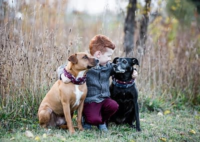 A_boy_and_his_dogs
